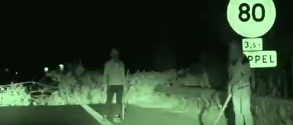 migrant hijack