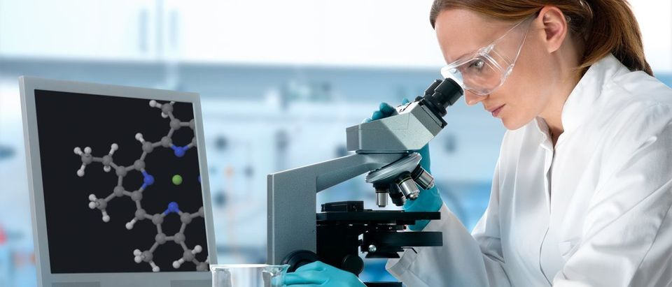Female scientist working at the laboratory with a microscope (Shutterstock/Alexander Raths)