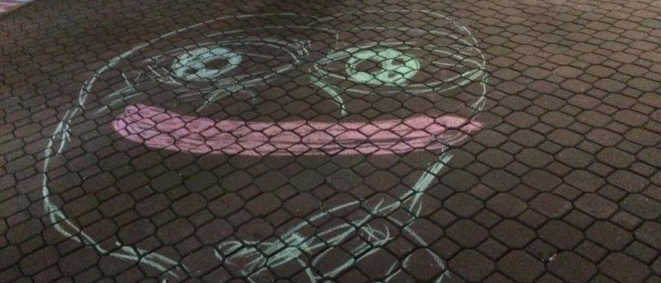 Pepe pro-Trump chalking at Appalachian State University [Photo: Anonymous Appalachian State University student]