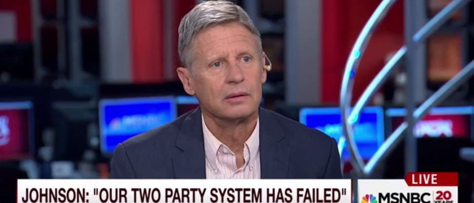 Gary Johnson Morning Joe