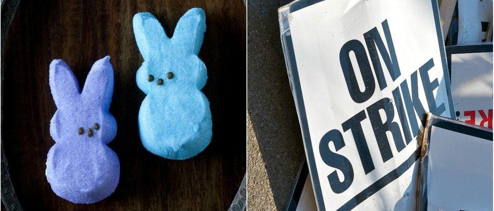 Peeps: Catherine Murray/shutterstock.com, On Strike Sign: John Kershner/shutterstock.com