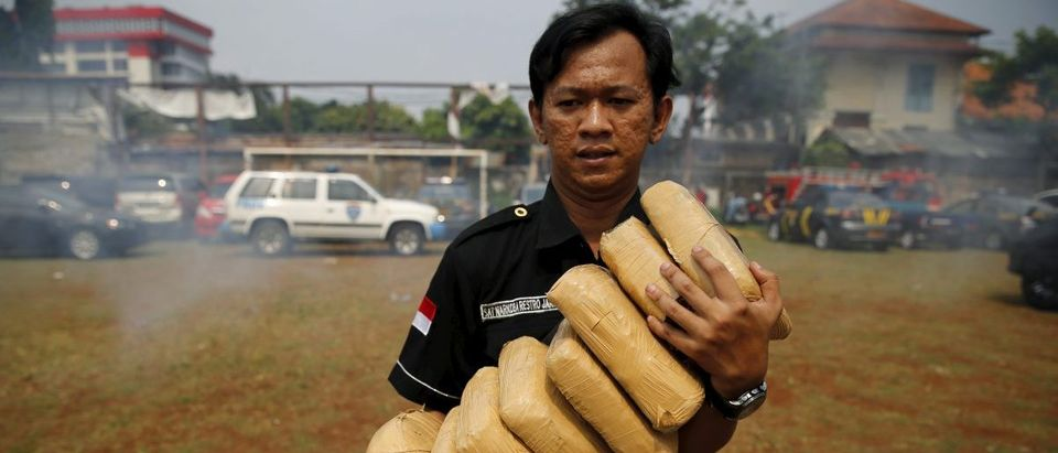 A police officer carries 1kg packs of marijuana before burning them at a West Jakarta police office