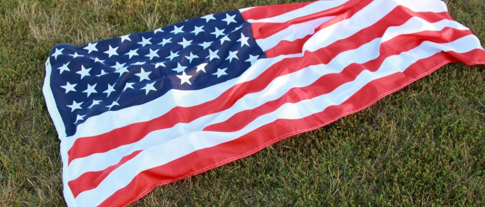 US flag on the grass Shutterstock/Maryna Kulchytska