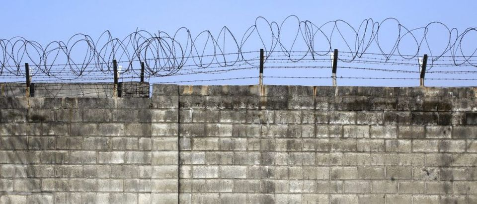 Brick wall with barbed-wire (Credit: yabu / shutterstock.com)