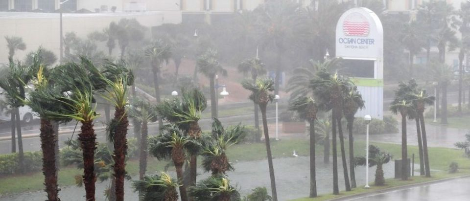 Rain batters palm trees in front of the Ocean Center as the eye of Hurricane Matthew passes Daytona Beach. REUTERS/Phelan Ebenhack