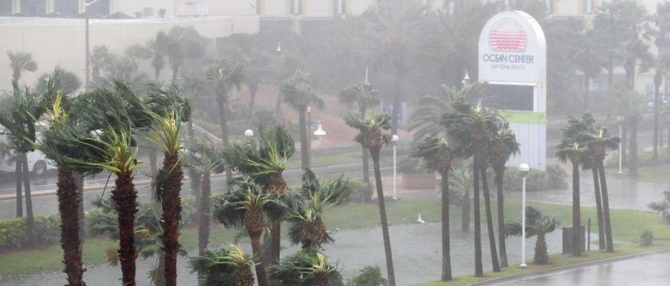 Rain batters palm trees in front of the Ocean Center as the eye of Hurricane Matthew passes Daytona Beach. REUTERS/Phelan Ebenhack