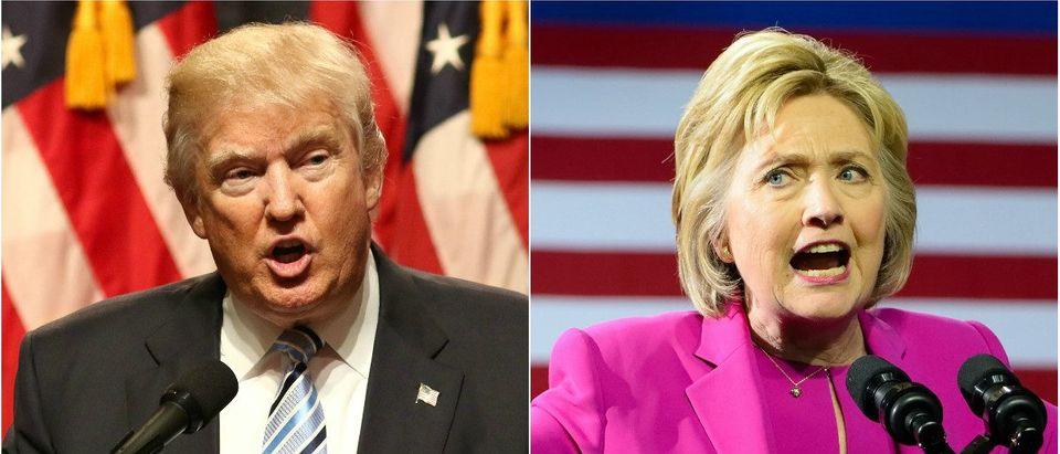 Donald Trump: JStone/shutterstock.com, Hillary Clinton: Evan El-Amin/shutterstock.com