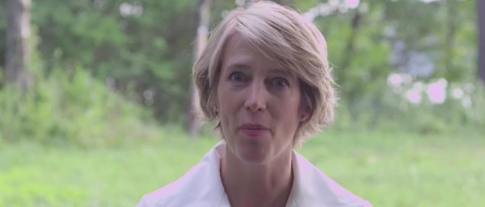 Zephyr Teachout 2016 Campaign Ad Video (Video Screen Capture)