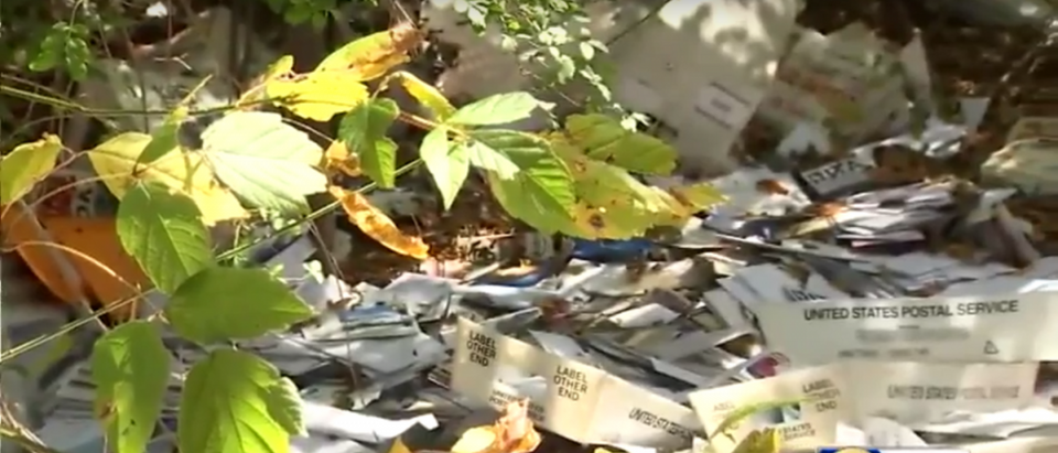 Thousands of pieces of mail dumped in a ditch