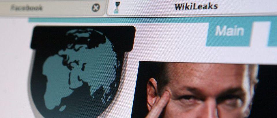 Wikileaks: haak78 / Shutterstock.com