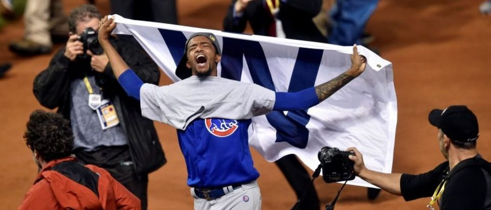 Chicago Cubs World Series: David Richard-USA TODAY Sports, Reuters