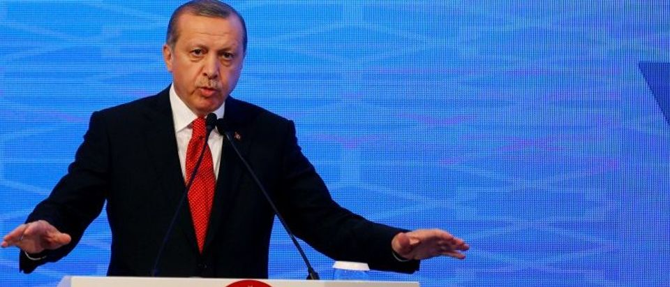 Turkish President Erdogan makes a speech during the NATO Parliamentary Assembly 62nd Annual Session in Istanbul