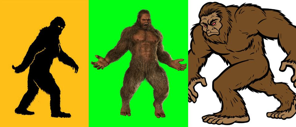 Bigfoot collage Shutterstock: Reno Martin, Best Green Screen, larryrains