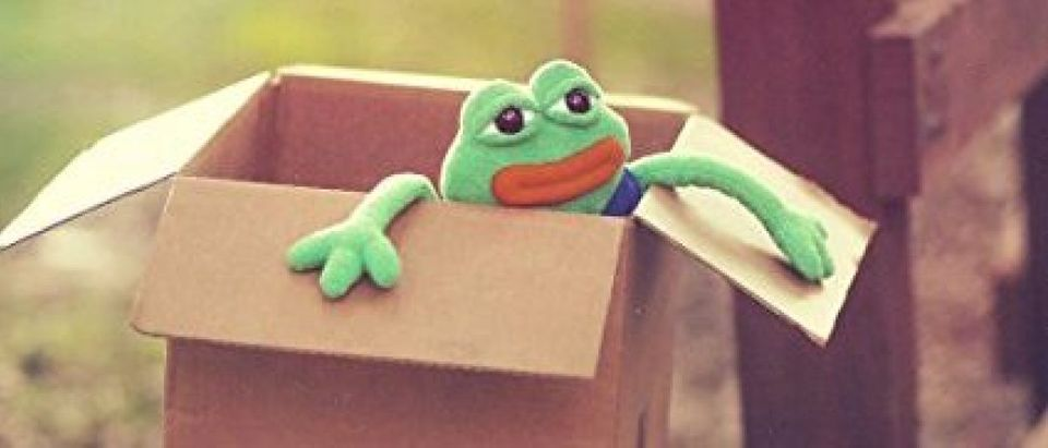 What is better than plushed Pepe? (Photo via Amazon)