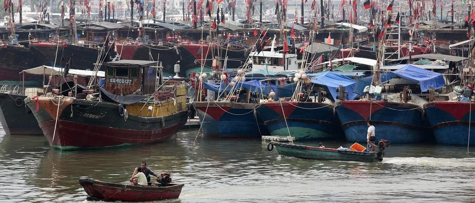 Fishermen drive a boat next to fishing ships docked at a port to shelter from Typhoon Wutip in Sanya, Hainan province