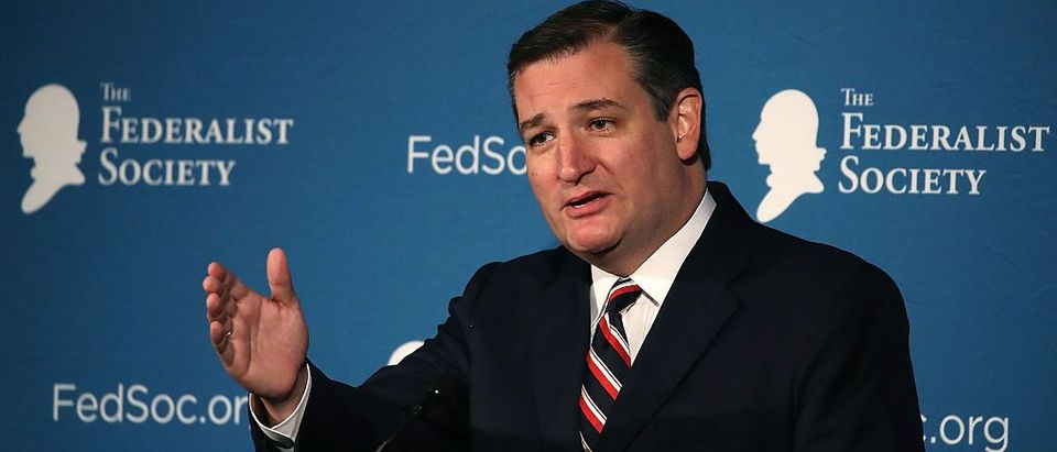 Ted Cruz (Getty Images)