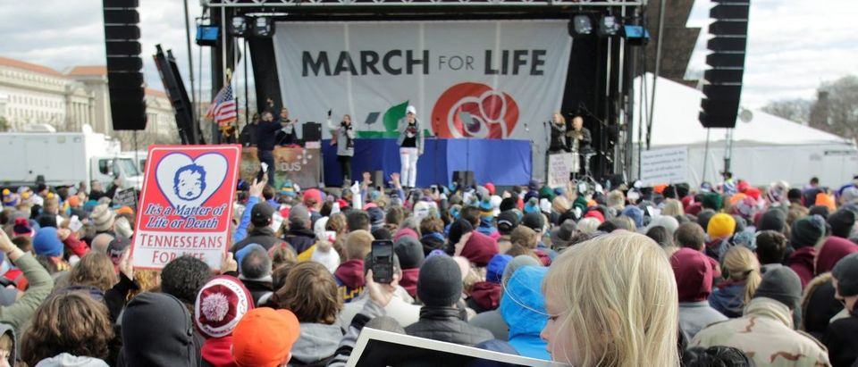 Thousands of people gather for the annual March for Life rally in Washington