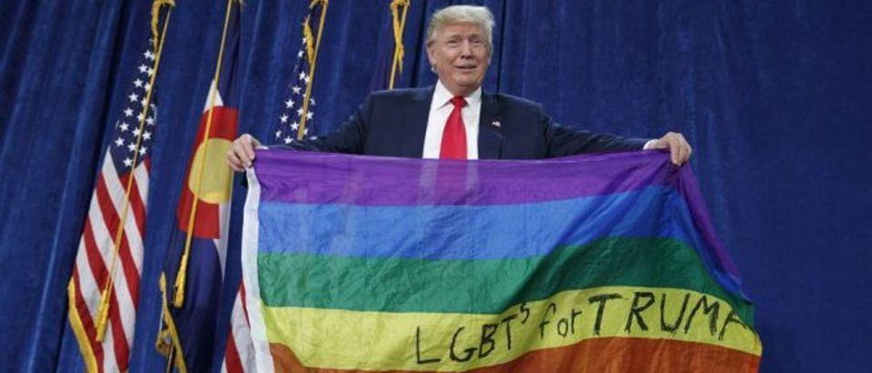 trump-gay