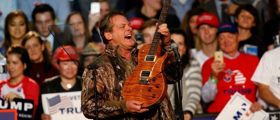 Musician and political activist Ted Nugent: REUTERS/Rebecca Cook