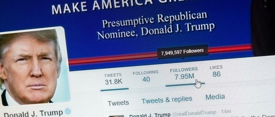 Trump Twitter Shutterstock/txking