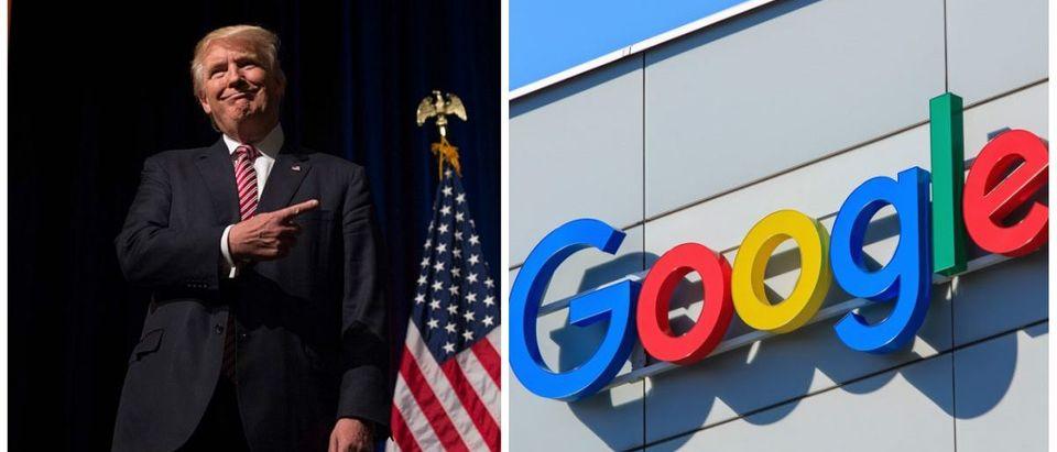 trump-google