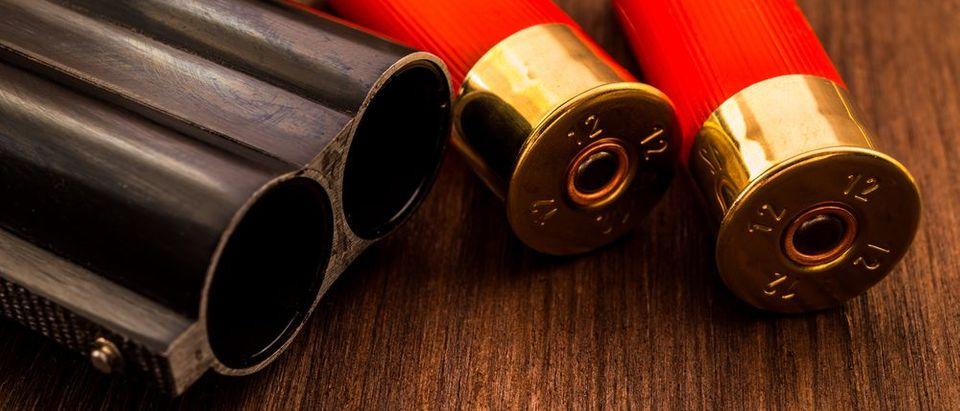 Shotgun (Shutterstock)