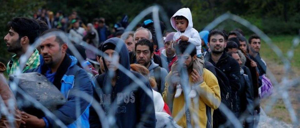 Migrants make their way after crossing the border at Zakany, Hungary October 16, 2015.