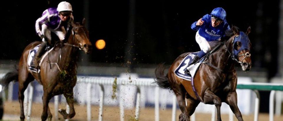 Horse Racing - Dubai World Cup