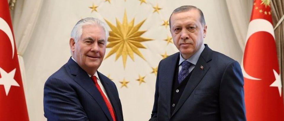 Turkish President Erdogan meets with U.S. Secretary of State Tillerson in Ankara