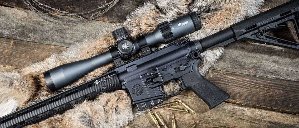 GD_Sig-M400-Predator