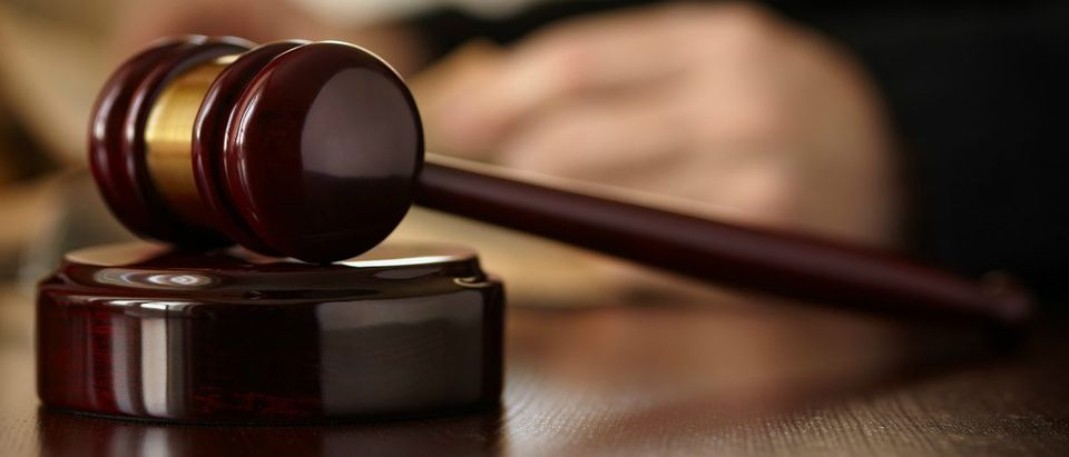 Judges Gavel: Shutterstock/kuzmafoto