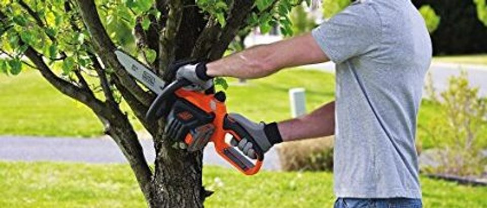 You might need to cut down a tree or two this summer (Photo via Amazon)