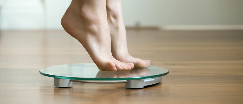 Scale (Credit: fizkes/Shutterstock)
