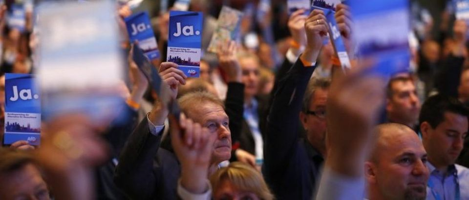 Anti-immigration party AFD congress in Cologne