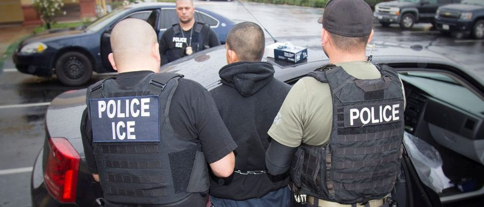 ICE officers detain a suspect