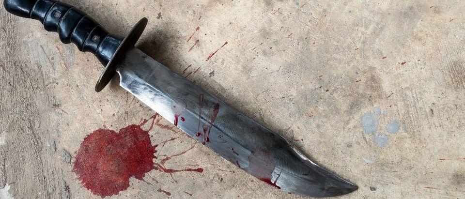 Knife laying on the ground. Ratsadapong rittinone/Shutterstock.