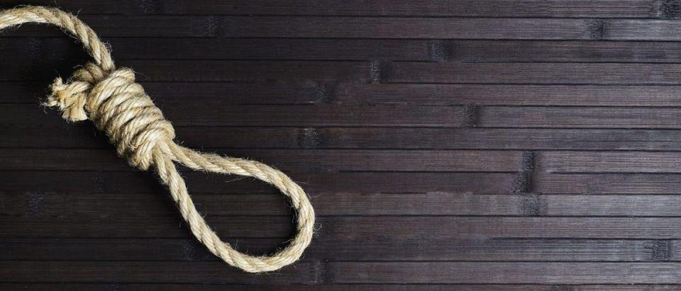 Noose (Shutterstock/Ddekk)