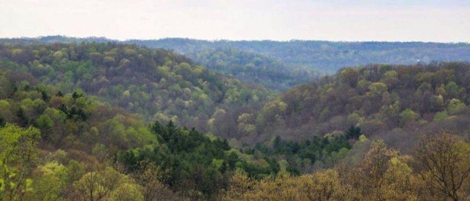 Wayne National Forest, Marietta Unit in Ohio