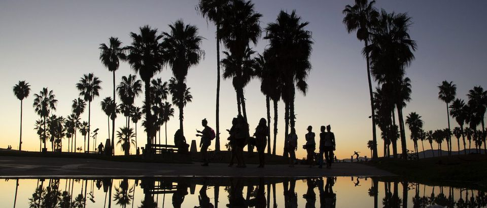 People walk near a puddle reflecting palm trees at the boardwalk in Venice, California