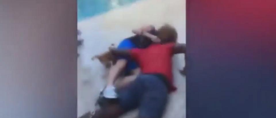 Woman body slammed on Broward County, Fla. pool deck (ABC News Screen Shot)