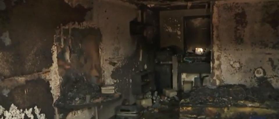 "Marijuana ""honey lab"" explodes. Screenshot"