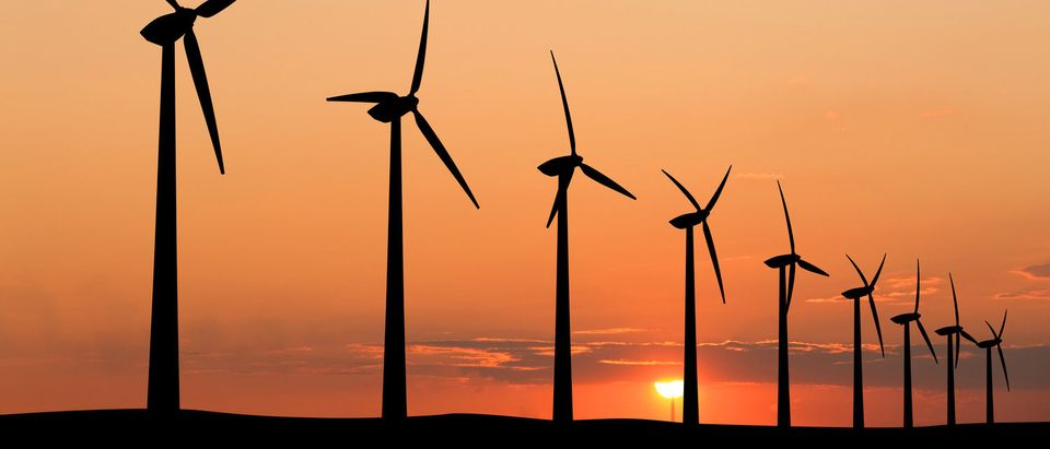 Wind generators (Shutterstock/ebNad)