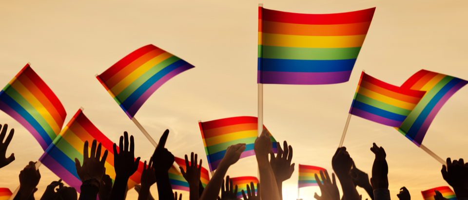 Silhouettes of People Holding Gay Pride Symbol Flag Shutterstock/rawpixel.com Gay Pride Flag