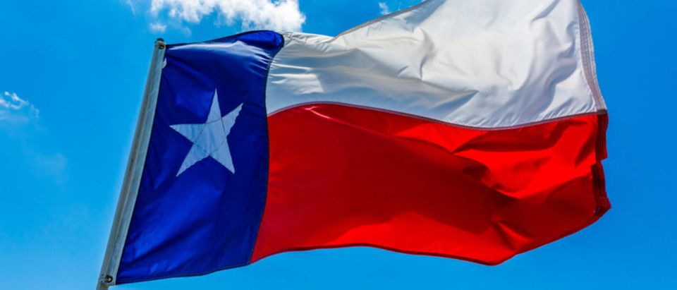 Lone Star Flag of the State of Texas, USA (Richard A McMillin/shutterstock_396674719)