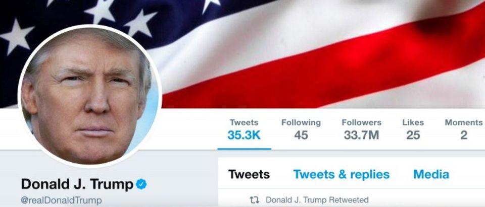 he masthead of U.S. President Donald Trump's @realDonaldTrump Twitter account