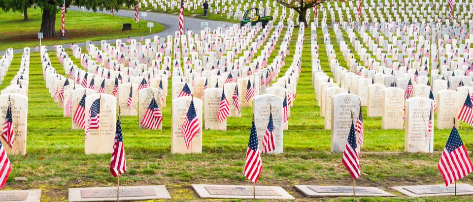 Bringing A Flag To Arlington Cemetery Can Get You One Year In Jail ...