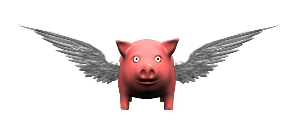 pigs fly Shutterstock Bruce Rolff