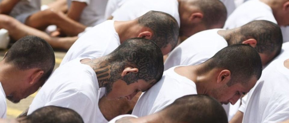 Handcuffed inmates, members of MS-13 and Barrio 18 gangs, wait upon arrival at the maximum security prison in Zacatecoluca, 65 kilometres east of San Salvador, on August 9, 2017. Forty-eight members of violent gangs arrested in connection with the murders of policemen and soldiers, were transferred on August 9 to Zacatecoluca, the Salvadoran authorities reported. (Photo: MARVIN RECINOS/AFP/Getty Images)