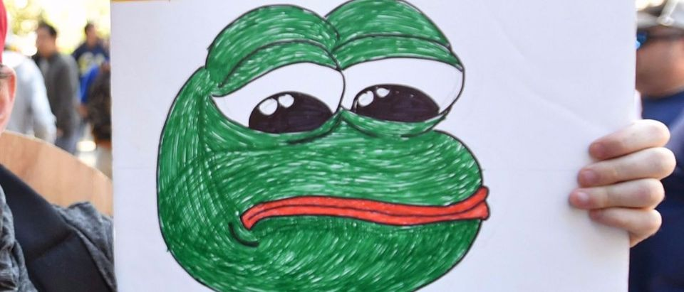 Pepe the Frog sign Getty Images/Josh Edelson