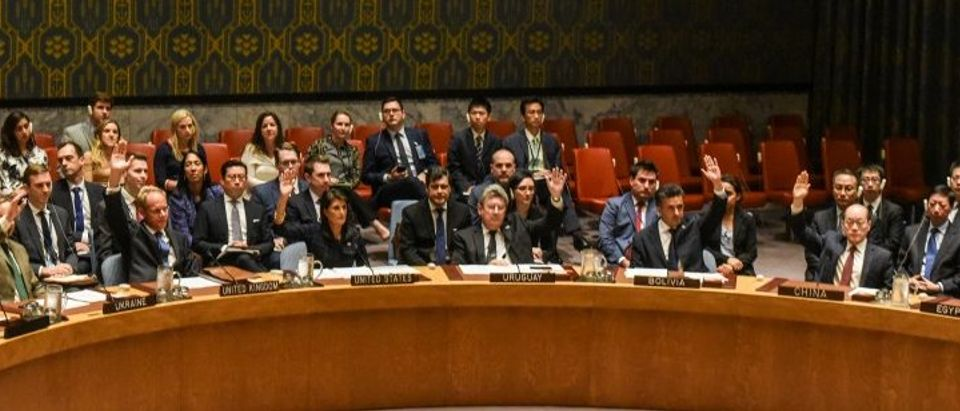 Ambassadors to the UN vote during a United Nations Security Council meeting on North Korea in New York City